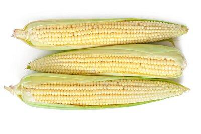 Ucho kukurydzy samodzielnie na białym tle