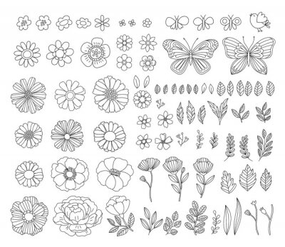 Plakat Vector hand-drawn spring design elements. Vintage rustic floral illustrations. Branches, leaves, flowers, butterflies, birds.