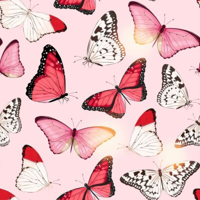 Plakat Vector pattern with high detailed tropic butterfly