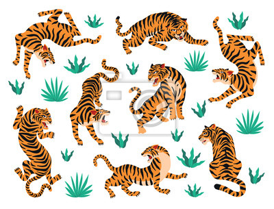 Plakat Vector set of tigers and tropical leaves. Trendy illustration.