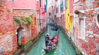 Plakat Venetian gondolier punting gondola through green canal waters of Venice Italy