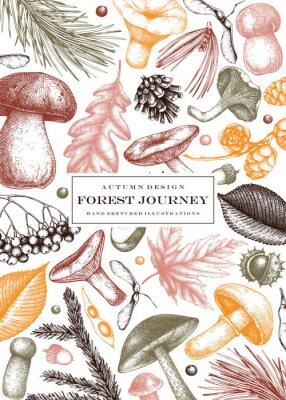 Plakat Vintage autumn card design. Hand drawn leaves, conifers, berries, mushrooms illustrations. Vector mushrooms template. Trendy botanical background.