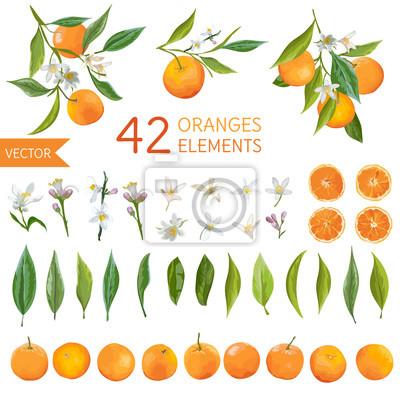 Plakat Vintage Pomarańcze, kwiatów i liści. Lemon Bouquetes. Akwarela Style