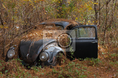 Plakat Volkswagen w lesie
