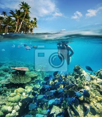 W poszukiwaniu podwodnej przygody 2