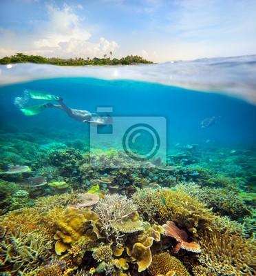Plakat W poszukiwaniu podwodnej przygodzie na rafie koralowej.