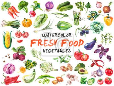 Plakat warzywa samodzielnie na białym tle akwarela
