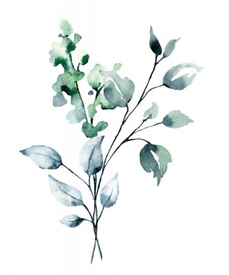 Plakat Watercolor branch with green leaves. Hand painting floral illustration. Leaf, plant isolated on white background.