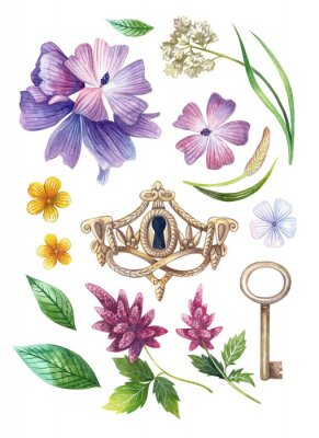 Plakat Watercolor flower sets. Illustrations on a white background. Yellow, lilac, pink and white flowers. Botanical painting.
