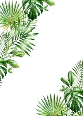Plakat Watercolor tropical background. Vertical frame with palm and monstera leaves in corners, place for text. Hand painted A5 card template. Realistic botanical illustrations isolated on white
