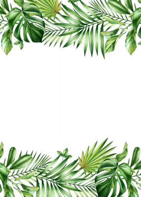 Plakat Watercolor tropical banner. Vertical frame with palm and monstera leaves, place for text. Hand painted A5 card template. Realistic botanical illustrations isolated on white
