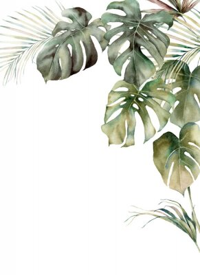 Plakat Watercolor tropical frame with monstera and coconut leaves. Hand painted exotic leaves isolated on white background. Floral illustration for design, print, fabric or background.