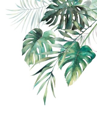 Plakat Watercolor tropical leaves poster. Hand painted exotic monstera and palm green branches composition on white background. Summer plants illustration