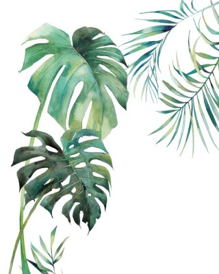 Plakat Watercolor tropical leaves poster. Hand painted exotic monstera and palm green branches isolated on white background. Summer plants illustration