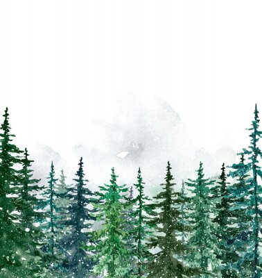Plakat Watercolor winter pine trees forest on white background. Hand painted spruce and pine trees illustration with falling snow. Landscape scene for Christmas cards, banners. Holiday design.