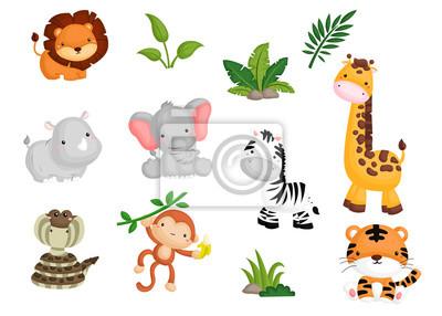 Plakat Wektor zestaw zwierząt dżungli