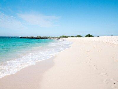 Plakat White sand beach