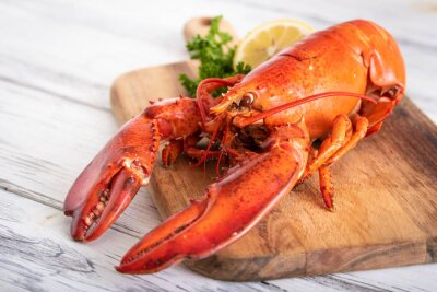 Plakat whole boiled lobster image