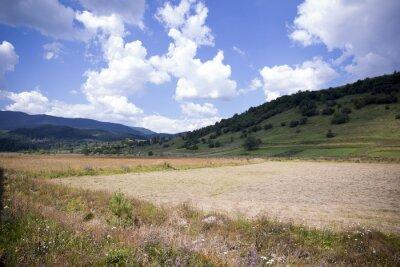 wiejski krajobraz z polami porośnięte zieloną trawą i polne kwiaty w tle wzgórz i gór w odległości pod błękitnym niebem