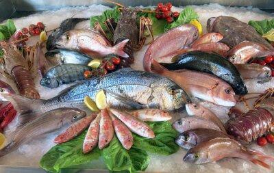 Plakat wielki biały dorada wielu ryb morskich w włoskiej restauracji, ka