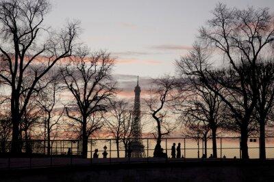 Plakat Wieża Eiffla i drzewa zima w Paryżu we Francji