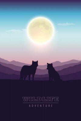 Plakat wildlife adventure wolf pack in the wilderness at full moon vector illustration EPS10