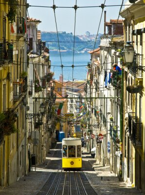 Plakat Winda da Bica, Lizbona