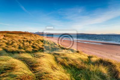Plakat Windswept sand dunes at Big Sand Beach at Gairloch