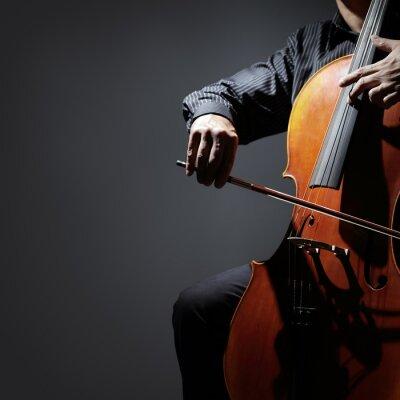 Plakat Wiolonczela muzyk wiolonczelista zawodnik lub wykonywania