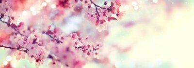 Plakat Wiosna granicy lub tła sztuki z różowy kwiat. Piękna przyroda sceny z kwitnące drzewa i flary słońca