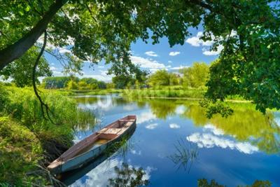 Plakat Wiosna krajobraz błękitne niebo chmury rzeka Narew łódź zielone drzewa trawy Polska wieś liście wodne