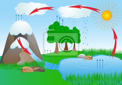 Wody W Otoczeniu Przyrody Cyklu Tlen Plakaty Redro