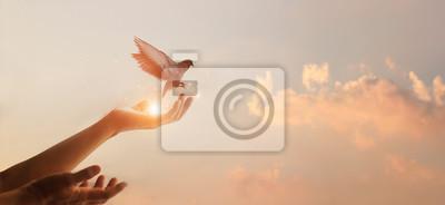 Plakat Woman praying and free bird enjoying nature on sunset background, hope concept