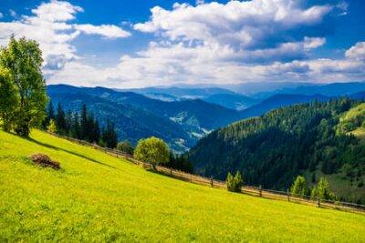 Plakat Wonderful landscape of Ukrainian Carpathian mountains.