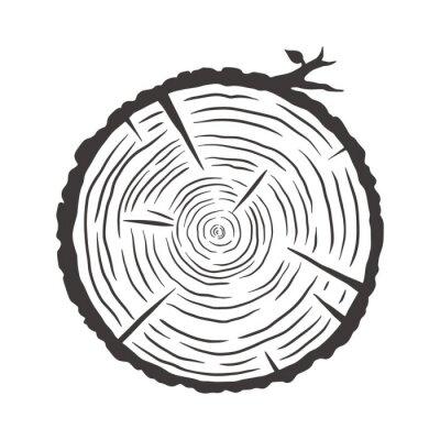Plakat Wood texture rings slice of tree wooden stump