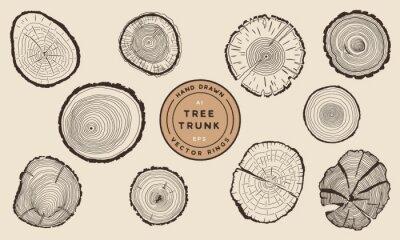 Plakat Wood Tree Trunk Rings - Hand Drawn Vector Set