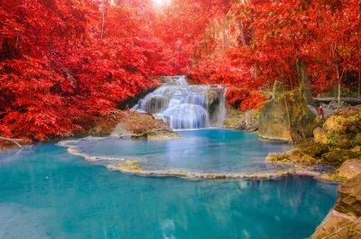 Plakat Wspaniały wodospad i czerwony liść w głębokim lesie w Erawan waterf