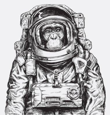 Plakat Wyciągnąć rękę wektor Monkey Astronaut
