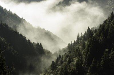 Plakat Wysokie góry w mgłę i chmury