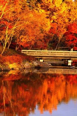 Plakat 秋 の 日本 庭園