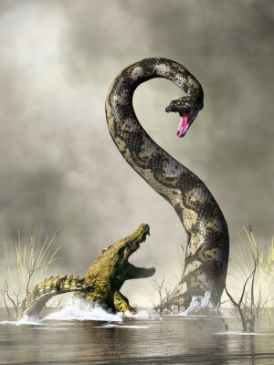 Plakat A huge snake rears up out of the water to confront an unfortunate crocodile. This is titanoboa, the largest snake to ever live. 3D rendering