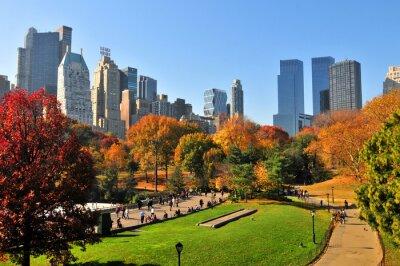 Plakat Jesień w Central Park & NYC.