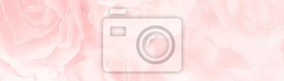 Plakat słodki kolor róż kwiat w rozmycie stylu dla tÅ,a deseÅ