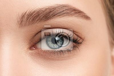 Plakat Young woman with beautiful eyebrows, closeup