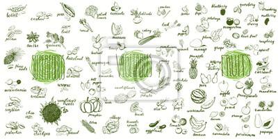 Plakat Zbiór owoców, warzyw i pożywienia. Ręcznie rysowane zestaw zdrowej i ekologicznej żywności. Multiset szkiców warzyw i owoców do projektowania menu.