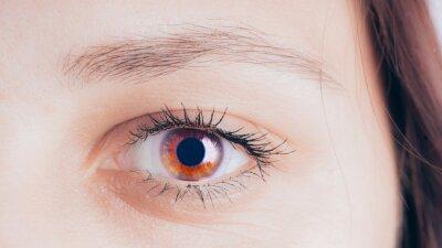 Zdjęcie makro oczu