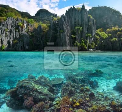 Plakat Zdjęcie ostre skały i kolorowe rafy koralowe w Philippine
