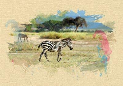 Plakat Zebra na papierze z teksturą. Efekt Pędzel
