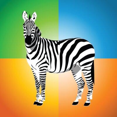 Plakat Zebra.Vector ilustracji.