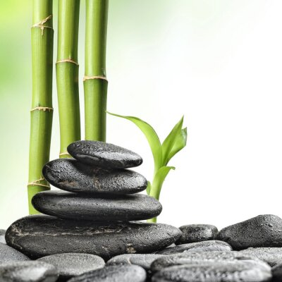 Zen kamienie i bambusa na bia? Ym